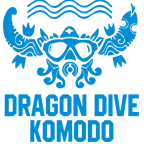 dragon dive komodo PADI instructor course