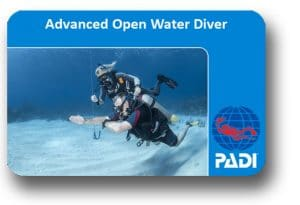 padi advanced open water komodo dragon dive komodo